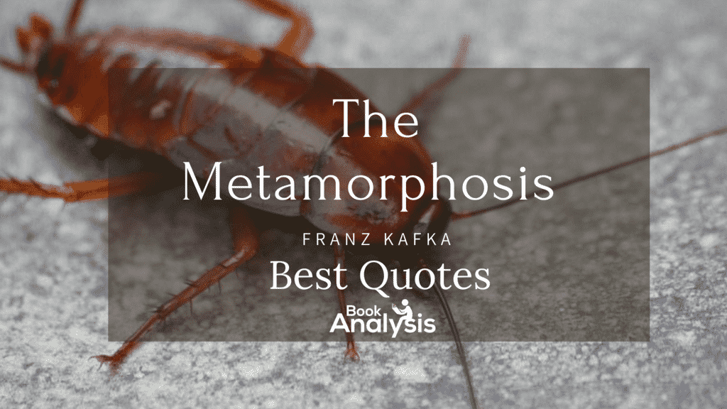 The Metamorphosis Quotes